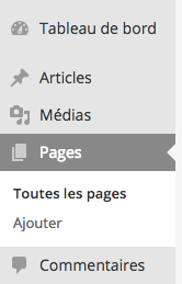 Comment accéder aux pages WordPress ?