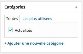 Les catégories des articles WordPress