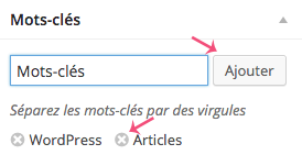 Les mots-clés des articles WordPress