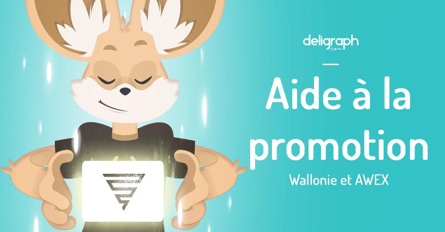 Aide financière pour la création d'un site internet et la création graphique : Wallonie et AWEX