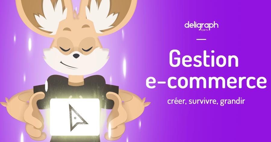 Gestion e-commerce : créer, survivre, grandir