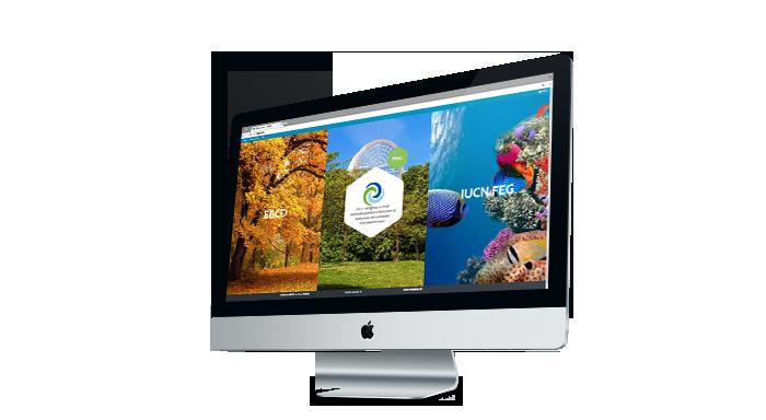 Agence web Bruxelles : création site internet institutionnel