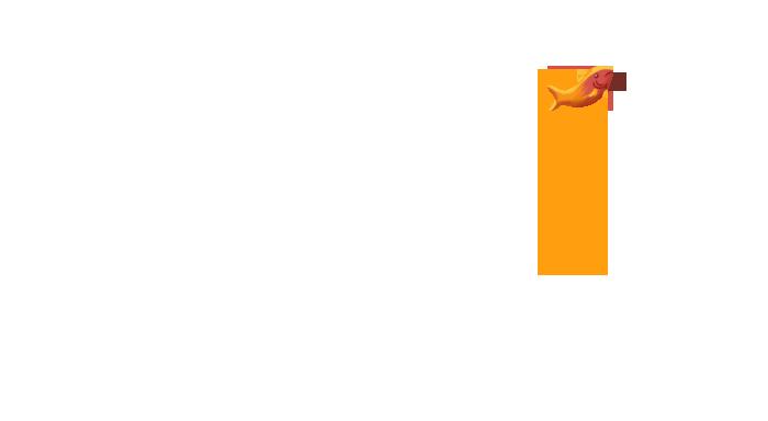 Création site internet institutionnel - Illu poisson arrière