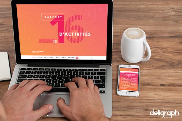 Agence web : Création site vitrine pour des Rapports d'activités