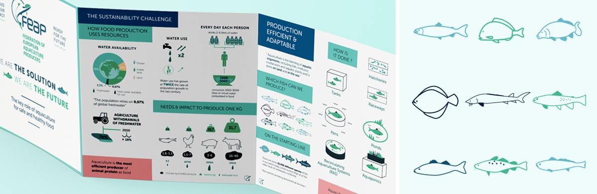 Infographie pour la Fédération européenne des aquaculteurs