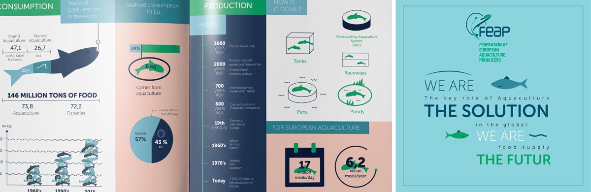 Infographie pour une Fédération européenne d'aquaculture - studio graphique